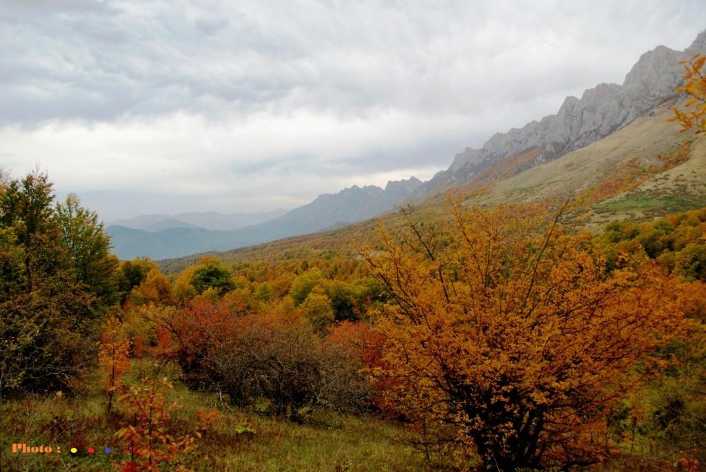 ارتفاعات ِ ناکجای سوادکوه